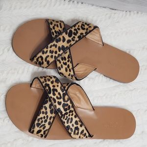 J crew leopard print sandals